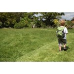 LittleLife Alpine 4 Зелена детска раница